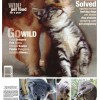 """Pet New Zealand"" Magazine showcases our book KOALAS: MOVING PORTRAITS OF SERENITIY"