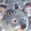 Press Release — KOALAS: MOVING PORTRAITS OF SERENITY Debuts to Set a New Standard for Animal Photography